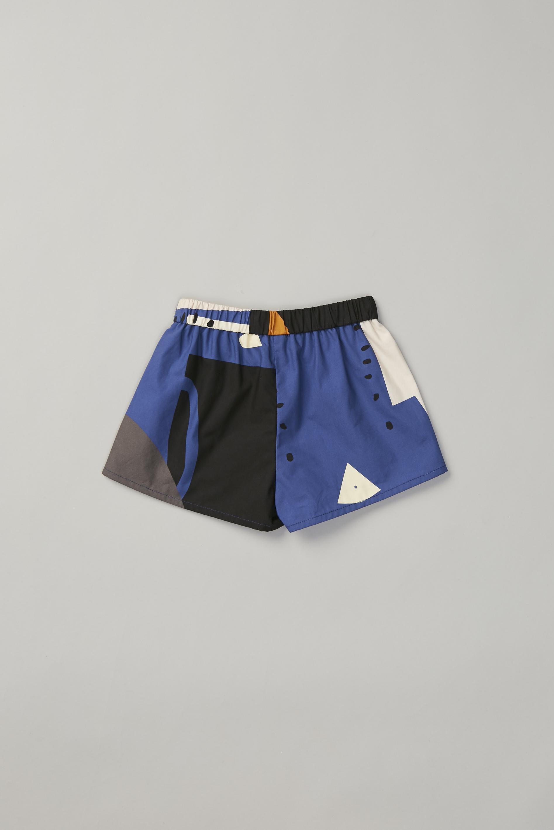 Roadmap Shorts